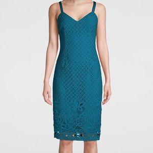 New White House Black Market Eyelet Sheath Dress